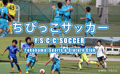 Y.S.C.C SOCCER Yokohama Sports & Culture Club